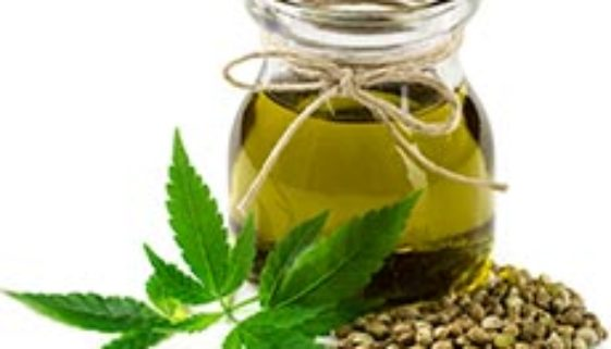 CannabisSativaSeedOil